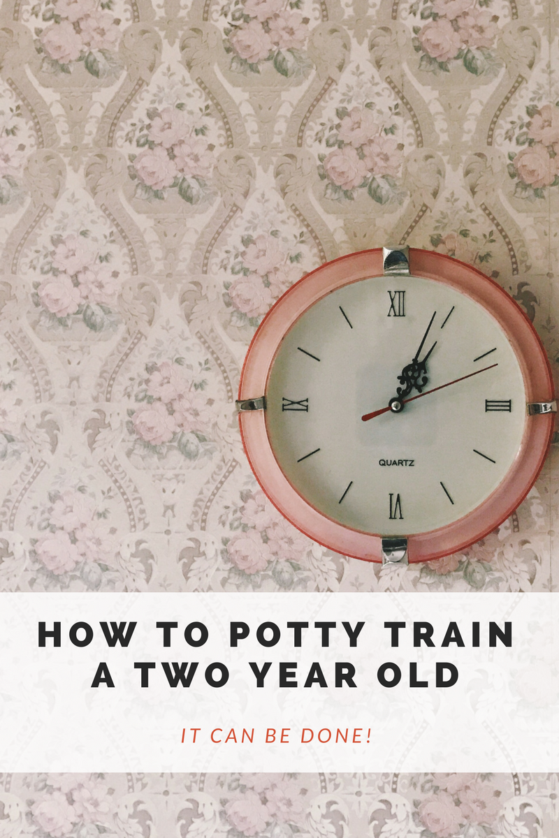 How To Potty Train A 2 Year Old