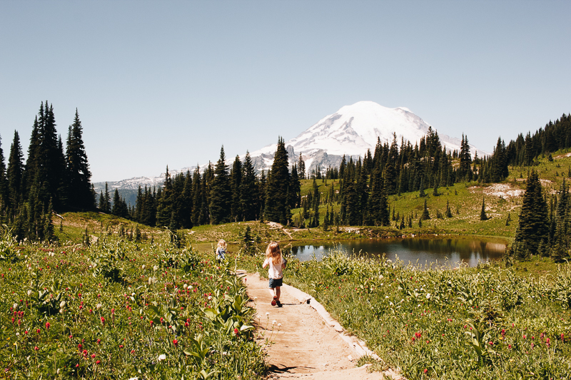 Weekend trip from Seattle: Mt Rainier National Park!