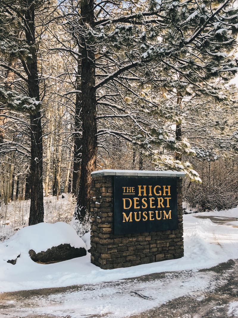 Things to do (with kids!) in the winter in Bend, Oregon
