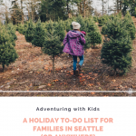 Adventuring with Kids: Holiday To-Do List